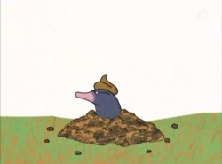The story of the little mole...