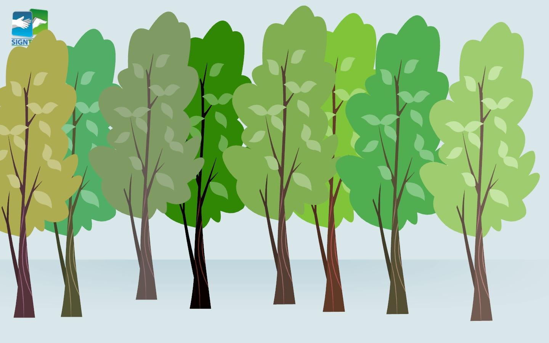 Tree - many - row